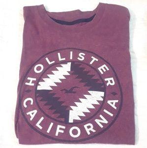 NWOT MEDIUM HOLISTER CALIFORNIA T-SHIRT MENS